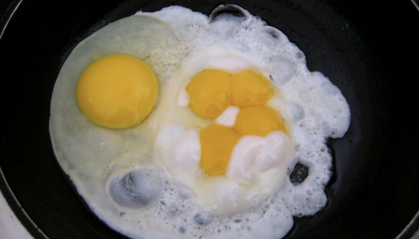 Eggs Accelerate Cancer