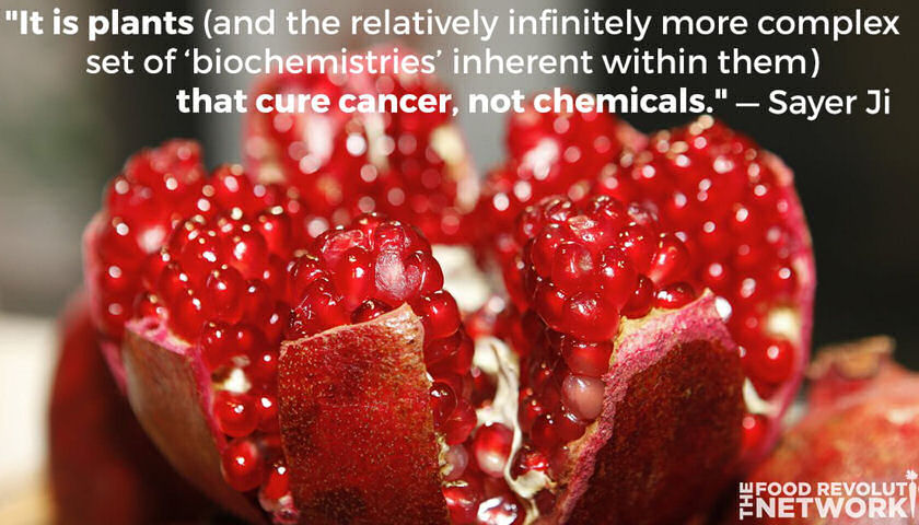 cancer killing foods